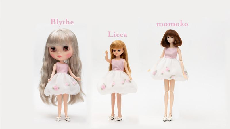 Licca_3